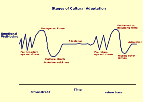 cultural-adaptation