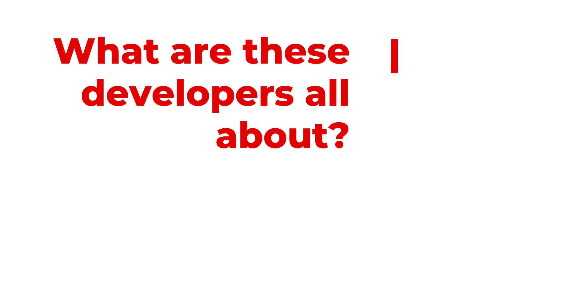 what are these developers all about