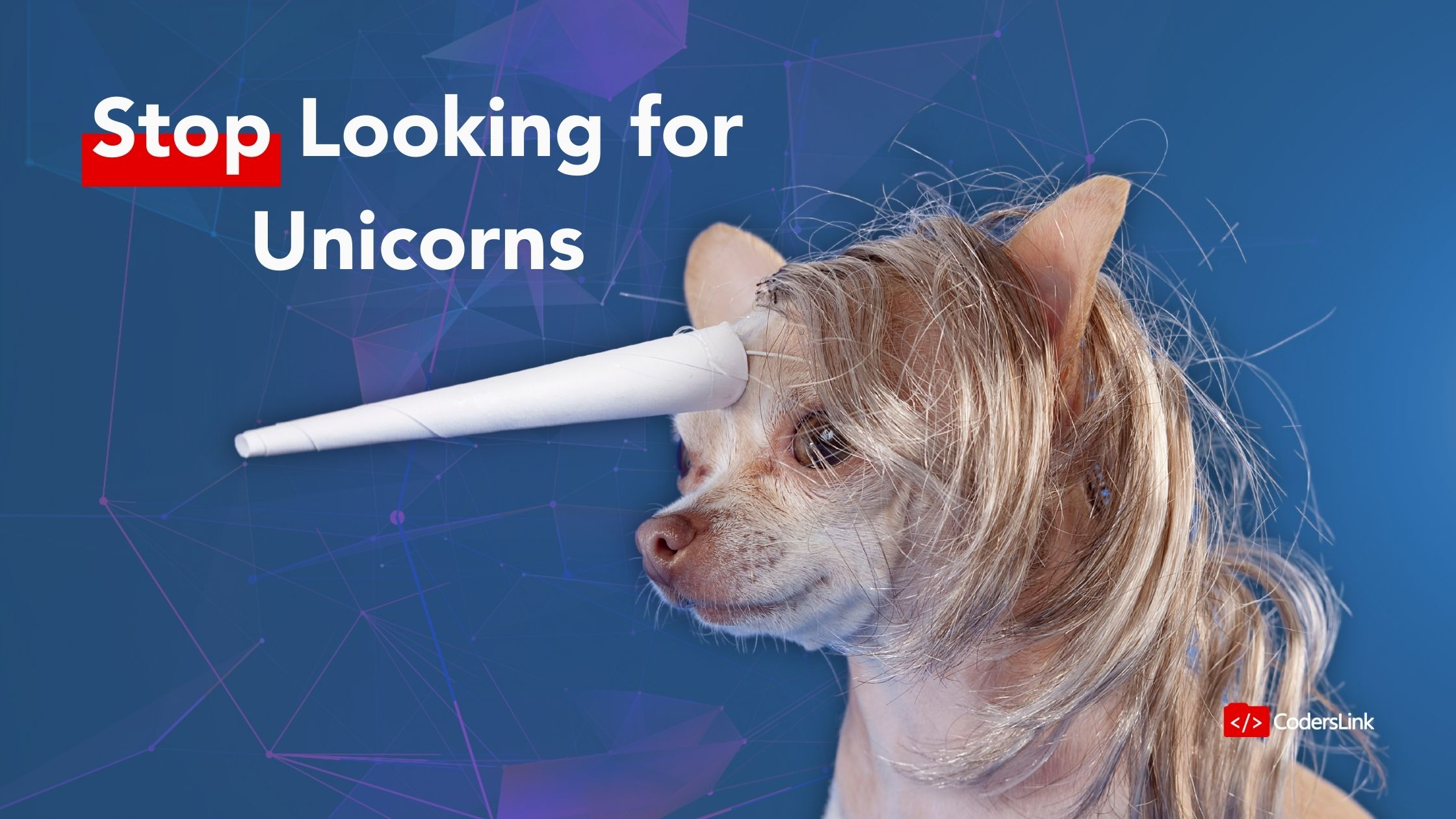 You can't find skilled candidates because you are looking for unicorns